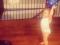 Δείτε την Καλομοίρα να παίζει μπάσκετ με τα δίδυμα αγόρια της! (Βίντεο)